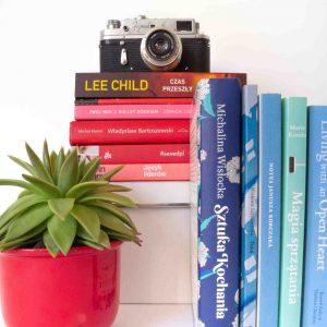 aparat fotograficzny vintage sukulent książki