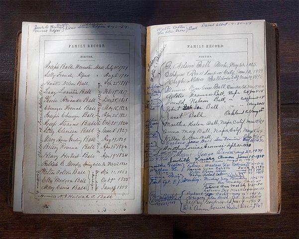 Bible journalling z 1859 roku z zapisanymi datami urodzin